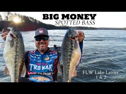 Big Money Spotted Bass - Lake Lanier
