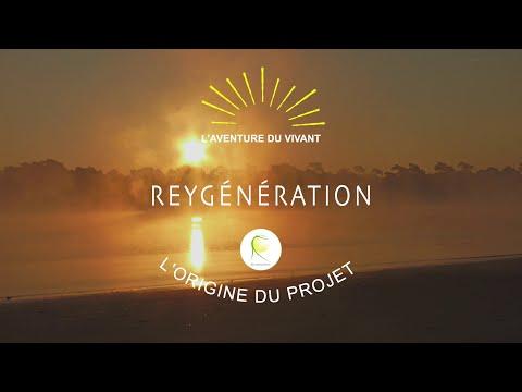 Reygénération - L'origine du projet