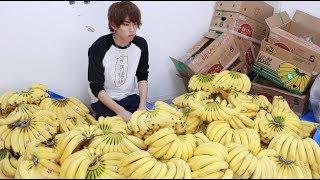 間違えてバナナ1500本買ってしまいました thumbnail