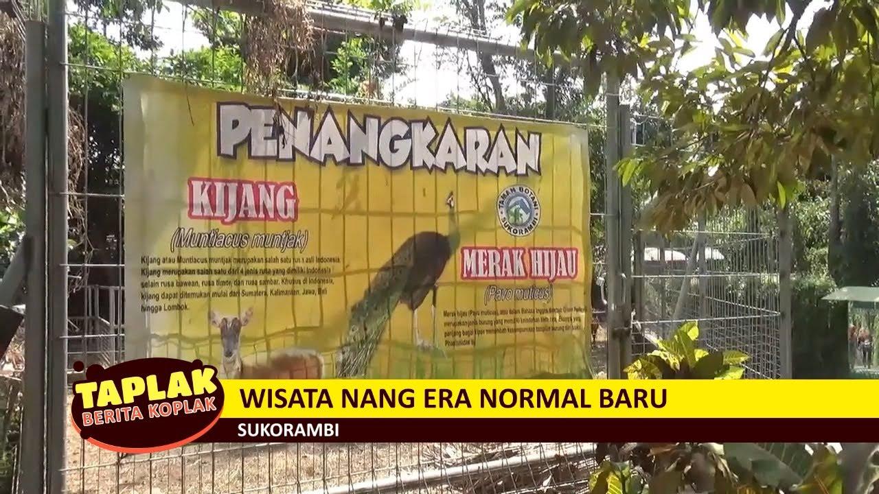 Wisata Nang Era Normal Baru