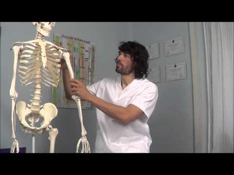 tendinitis-pulgar:-tratamiento-de-osteopatía-y-cadenas-musculares-por-francisco-alonso