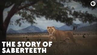 The Story of Saberteeth