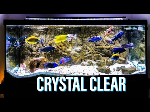 Crystal Clear Aquarium Water