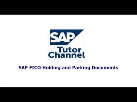 SAP FICO Holding and Parking Documents