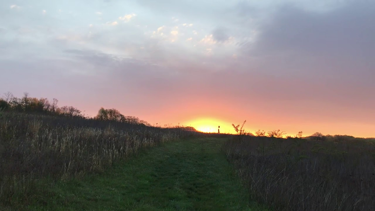 Sunrise Meadow Garden Walk