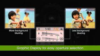 sony Alpha 390 Walkthrough and Review