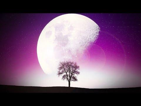 Prosperity Mindset While You Sleep   Affirmations All Night   Binaural Meditation Music   Stream #84