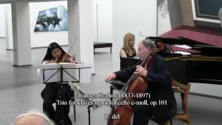 TRIO QUINTILIAN giver koncert på Randers Kunstmuseum II. del