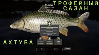 Рр4 ТРОФЕЙНЫЙ САЗАН Ахтуба