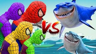 Colors Spiderman Finger Family - Spiderman Family Vs Baby Shark Finger Family Songs For Kids