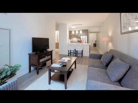 A furnished one-bedroom in a new Streeterville apartment tower