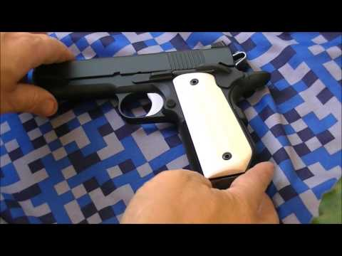 Dan Wesson Guardian Sarges Grips Ivory