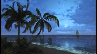 1 hour of Tropical Beach Sounds at night. Relaxing sea waves to help sleep.