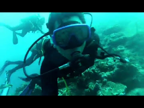 Diving in Banda Islands, Indonesia (Extended Version)
