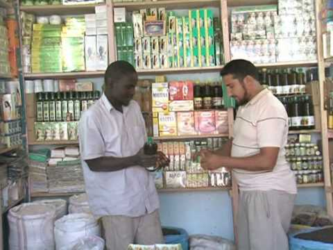 Healers make up for lack of health network in Mauritania