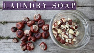 HORSE CHESTNUTS FOR LAUNDRY: free and sustainable soap nut substitute