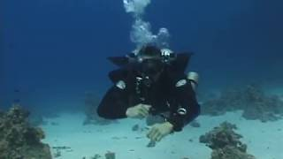 (5thD-X) Essentials Of Technical Diving (Stages - Stage Switch)