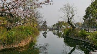 無錫船遊太湖(蠡湖)西施島 4K