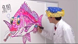 さかなクンが自らのイラストとともに解説する「さかなクンのお魚図鑑」 ...