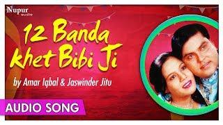 12 Banda Khet Bibi Ji - Amar Iqbal & Jaswinder Jitu   Superhit Punjabi Duet Song   Priya Audio