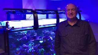 Paletta 500 Gallon Reef Tank Build Out - moving from a smaller reef tank to the ultimate reef tank