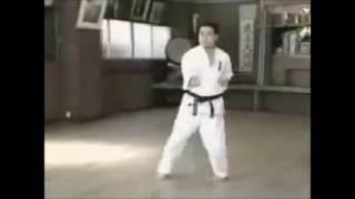 極真空手の型「五十四歩」です。 KyokushinKata Sushiho.