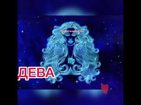 ДЕВА гороскоп с 23 ноября по 29 ноября 2020🌸гороскоп дева на неделю🌸гороскоп дева на сегодня🌸