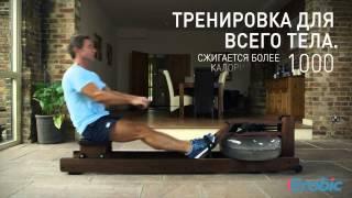 видео Тренажер гребля - какие мышцы работают и сколько сжигает