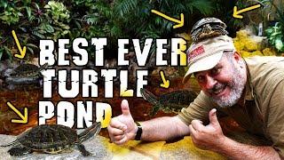 Video Watch Until the End for Best Aquascape Turtle Pond Reveal download MP3, 3GP, MP4, WEBM, AVI, FLV Agustus 2018