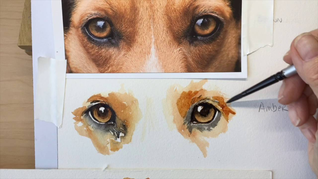 How to paint a dogs amber eyes