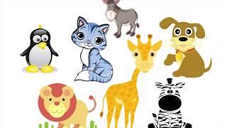 Zwierzęta dla dzieci po angielsku - film edukacyjny dla najmłodszych dzieci.