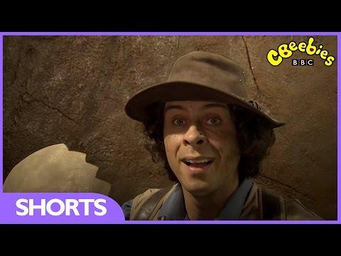 CBeebies: Andy's Prehistoric Adventures - Dinosaur Eggshell