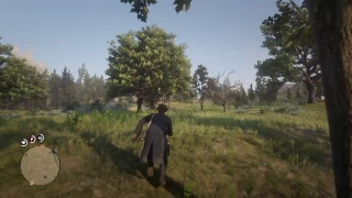 [LIVE FR] PS4 red dead redemption test en ligne part 2 (GO 1050 abonne)