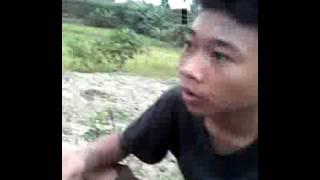 Mencari belalang di sawah
