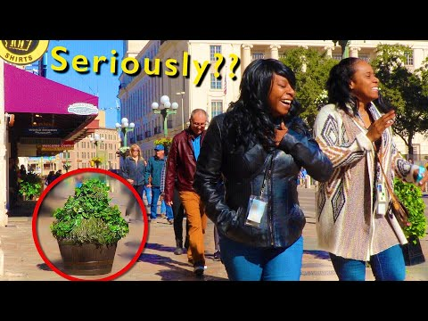 Bushman Prank 2020: Ultimate Best of Video!!