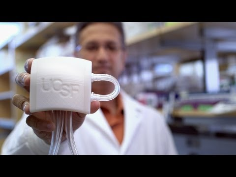 An implantable, artificial kidney