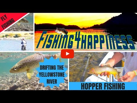 YELLOWSTONE RIVER FLY FISHING...HOPPER FISHING FOR TROUT