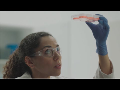 Cell Culture - Your Discoveries Change The World