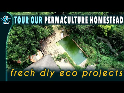 A detailed Water Self Sufficiency Webinar & a tour of permaculture urban garden