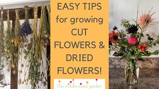 How to grow flowers for cutting and drying! Tips from an English country garden.