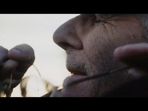 FOLKSTONE – ELICRISO (C'ERA UN PAZZO)