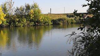 Министерство природных ресурсов и экологии Ростовской ...
