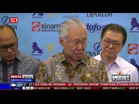 Indonesia Akan Balas Rencana Eropa Jika Ekspor CPO Dilarang