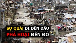 5 SUPER TYPHOON all over the world  in 21 CENTURY (Vietnamese Subtitles)