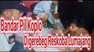 Download Rumah Kos Bandar Pil Koplo Digerebeg Polisi Mp3