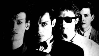 Bauhaus... Sanity Assassin