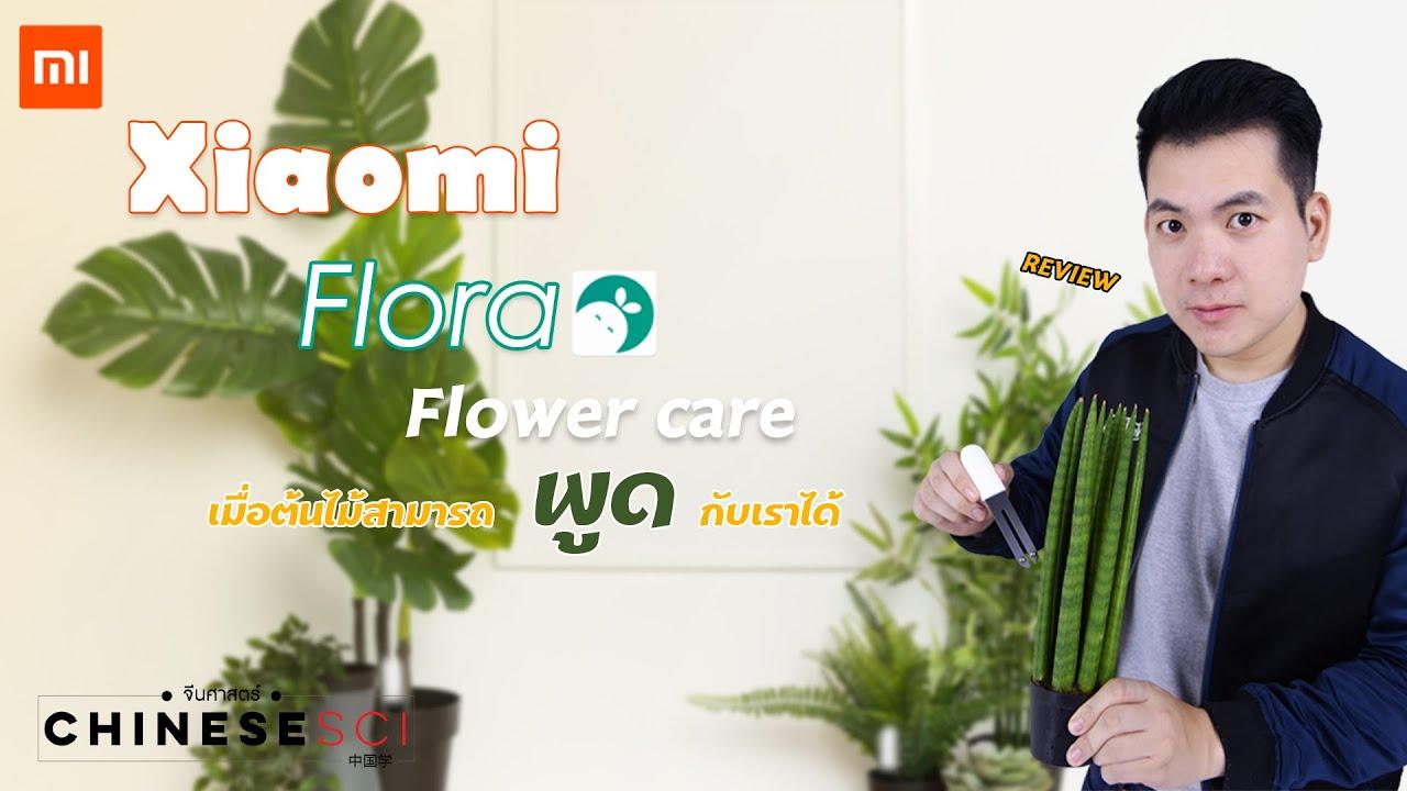 Xiaomi Flora Flower care จะเป็นยังไงถ้าต้นไม้อยากคุยกับเรา