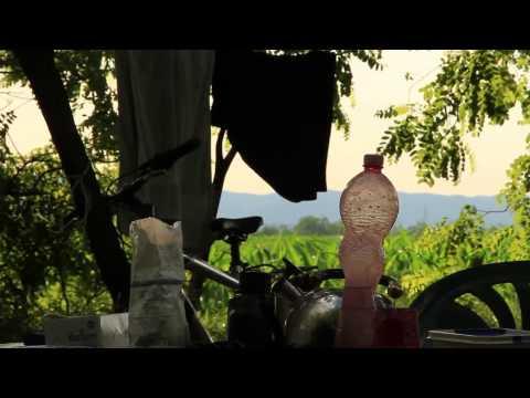 HELICON - Nestwatchers (Part 9.)