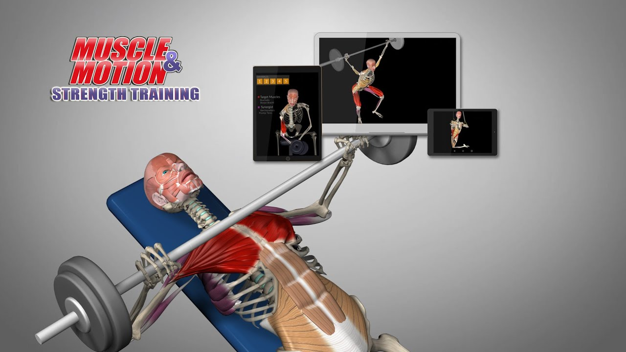 Strength Training App with 800+ 3D exercises & common mistakes