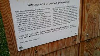 Hotel dla dzikich owadów zapylających